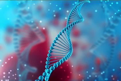 Algentech - Édition du génome
