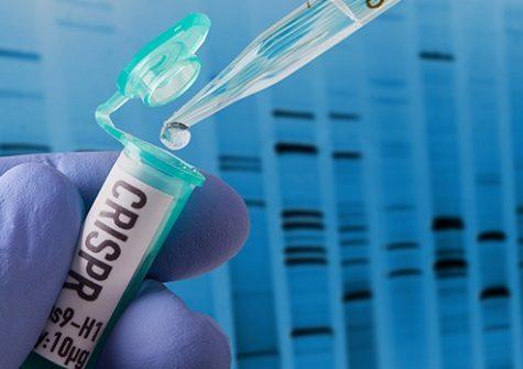 CRISPR research in laboratory
