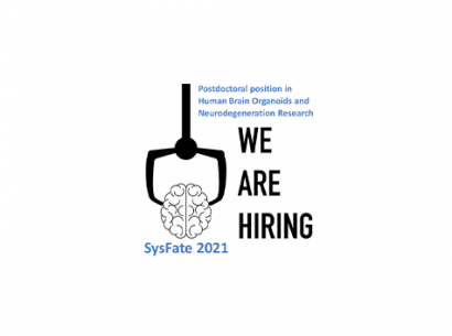 SysFate Postdoctoral 2021