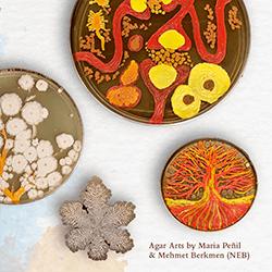 NEB - Arts of Agar