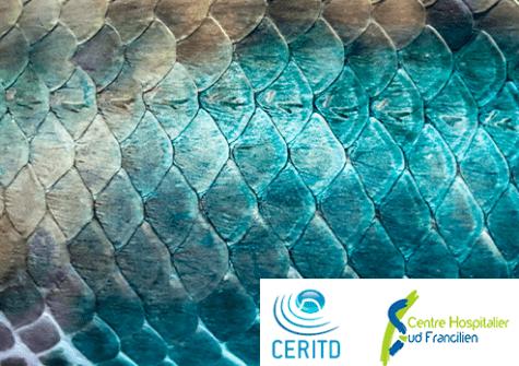 traitement des plaies diabétiques issu de peau et d'écailles de poissons